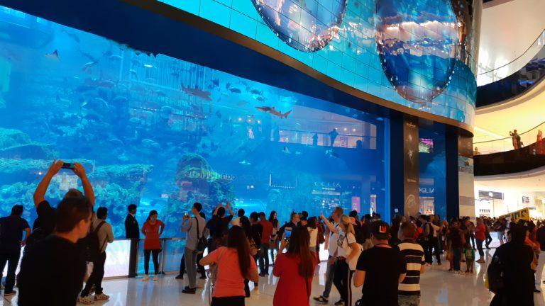 Akvárium v nákupním domě Dubai Mall