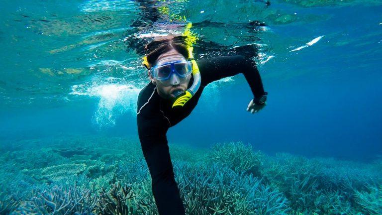 korálová zahrada, Abrolhos, šnorchlování